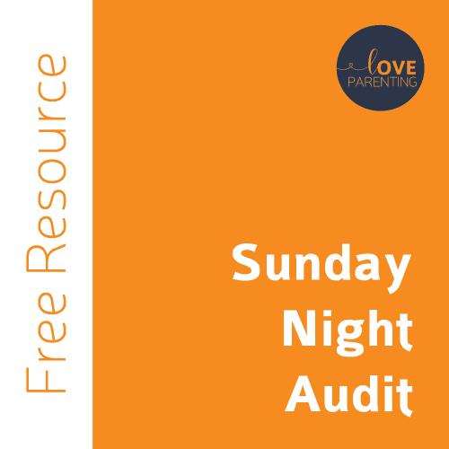 Sunday Night Audit Tool